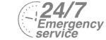 24/7 Emergency Service Pest Control in Erith Marshes, DA18. Call Now! 020 8166 9746